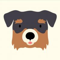 dog3E